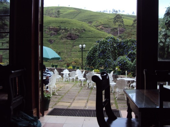 Who would not want to have tea here? Plus the aroma