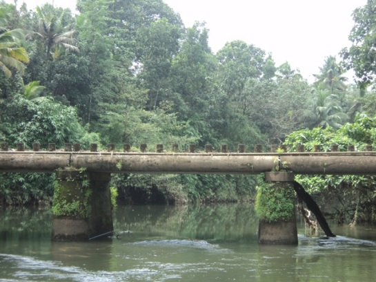 A bridge on which you will drive your car. It is part of nature :D